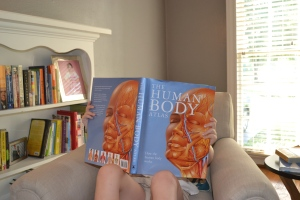 The body atlas certainly holds their attention and encourages many, many questions. I wonder why...
